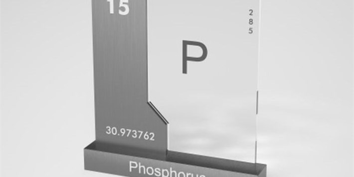 Phosphorus: Too much of a good thing?